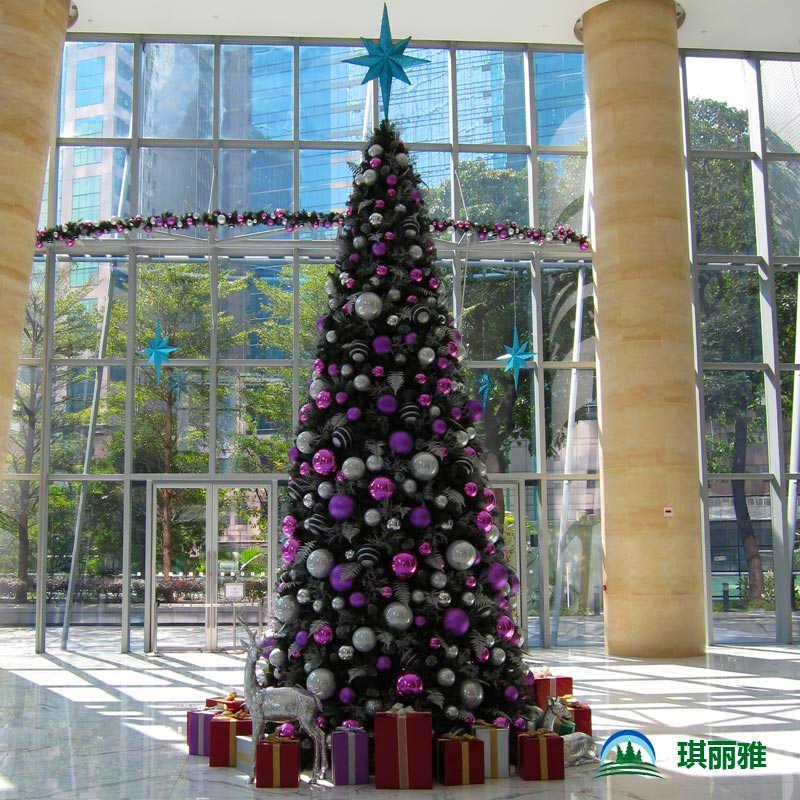 香港购买圣诞树